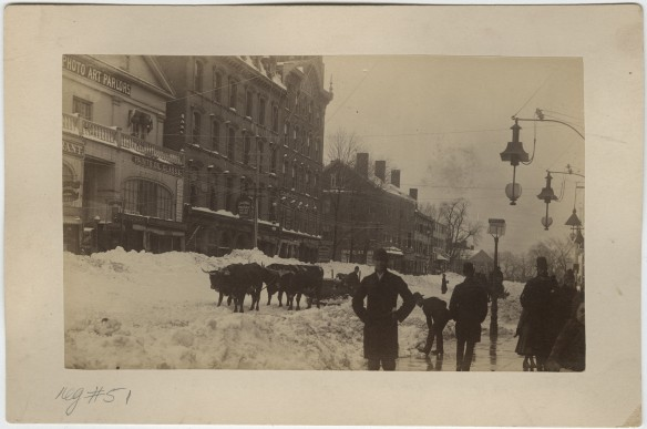 At the corner of Temple Street, Hartford. Oxen with cart in street. Blizzard of 1888. The Connecticut Historical Society collections.