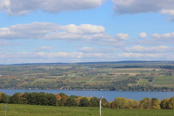 Scenic view in the Finger Lakes region of New York, 2013