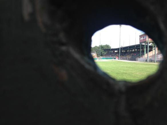 Today kicks off Bristol's 100th Anniversary Celebration of Muzzy Field